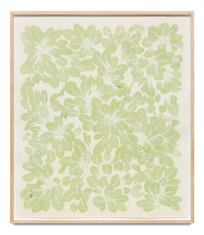 Haegue Yang, 'Edibles – Cold Storage, Earthbound Farm, Organic Baby Spinach, 142 g', 2019