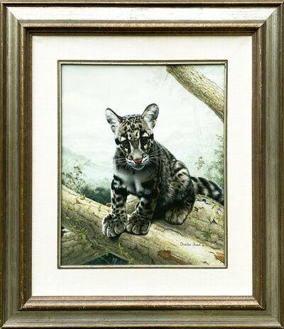 Charles Frace, 'The Leopard Cub', 20th Century