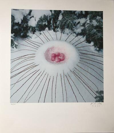 Nils Udo, 'Composition aux fruits', 1993