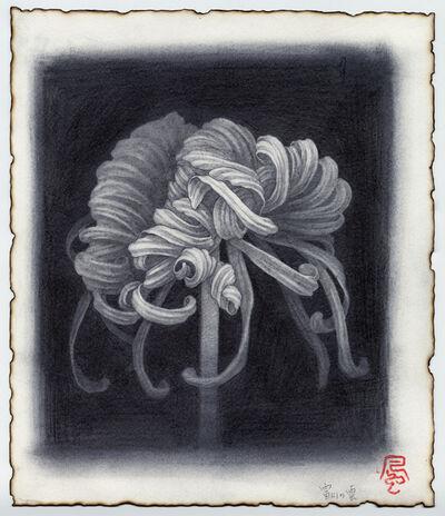 Fuco Ueda, 'FUJINOKUMO drawing', 2015