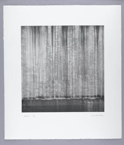 Paul Winstanley, 'Veil 1', 2008