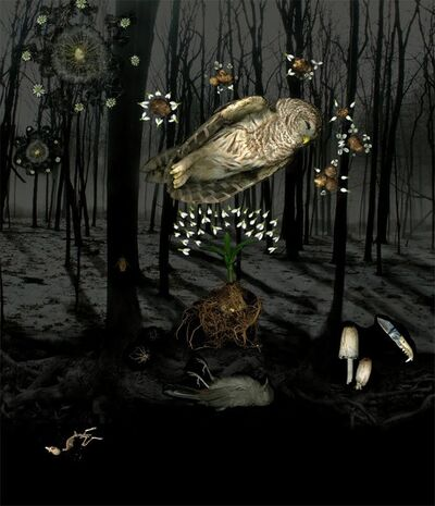 Portia Munson, 'Into the Woods', 2008