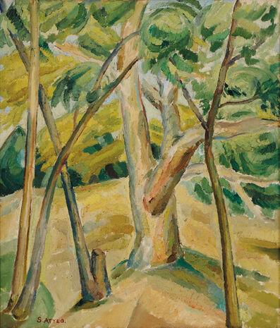 Sam Atyeo, 'Wyperfeld National Park', 1933