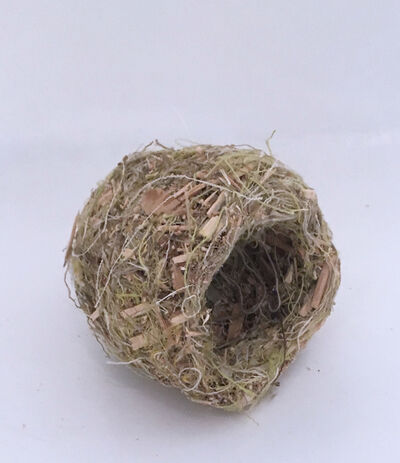 Robert Lach, 'Green Nest', 2020