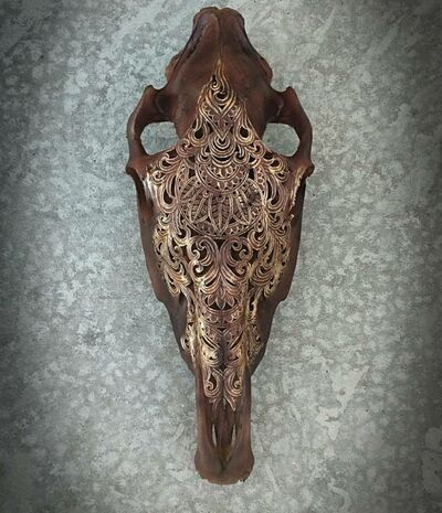 aletia sprague, 'Carved Horse Skull', 2019