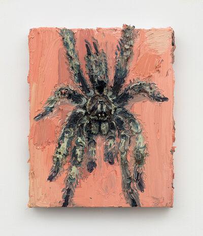 Allison Schulnik, 'Tarantula', 2019