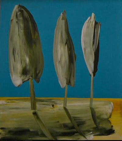 Giovanni Allio, 'Trasparenze', 2019