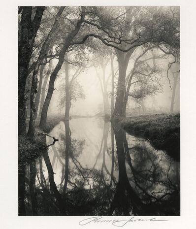 Roman Loranc, 'Backwater', 1998