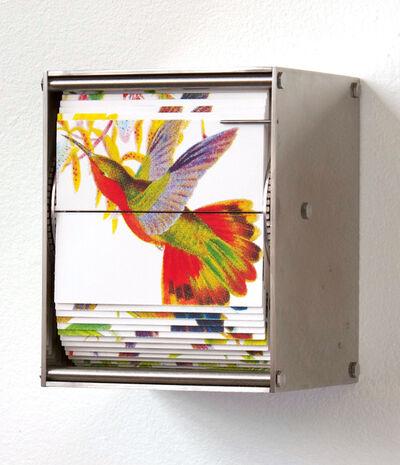 Juan Fontanive, 'Ornithology M', 2018
