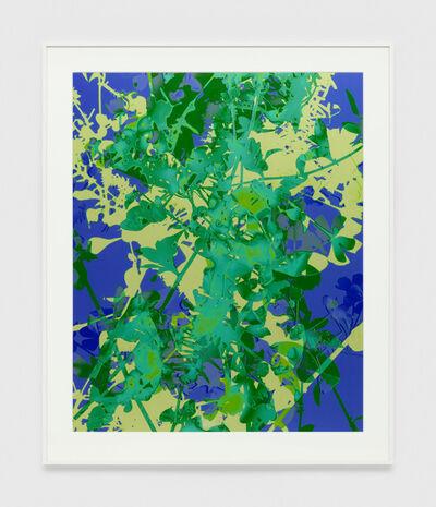 James Welling, '004', 2017