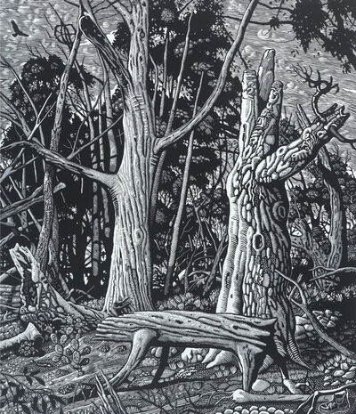 David Frazer, 'Wounded Wood II', 2017
