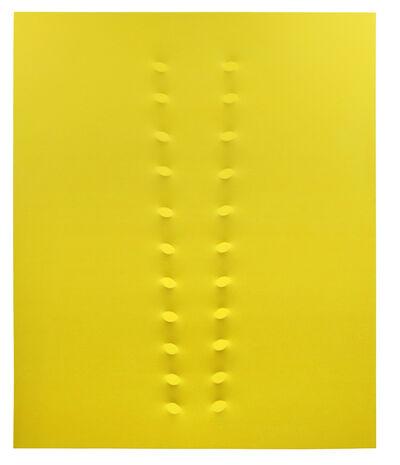 Turi Simeti, '22 ovali gialli', 2016