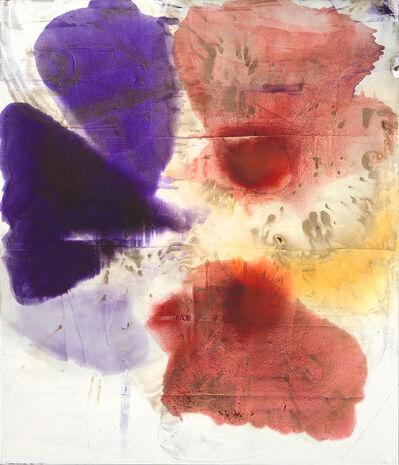 Dirk de Bruycker, 'Fruition ', 2014