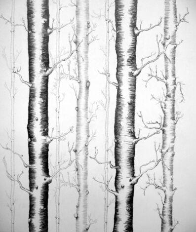 Francesca Gabbiani, 'Forest', 2008
