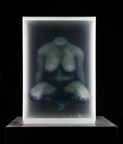 Xia Xiaowan, 'Trunk  躯干', 2010