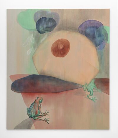 Jagoda Bednarsky, 'Shadowland (rain)', 2019