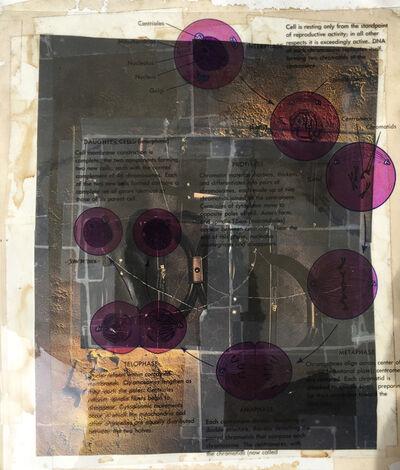 Michael Pink, 'Telophase', 1998