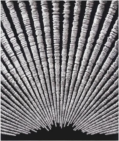 Erol Eskici, 'Zamanın Tortuları / Residiues of Time ', 2015