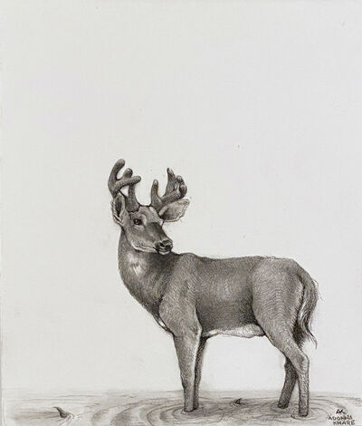 Adonna Khare, 'Deer in Water', 2021
