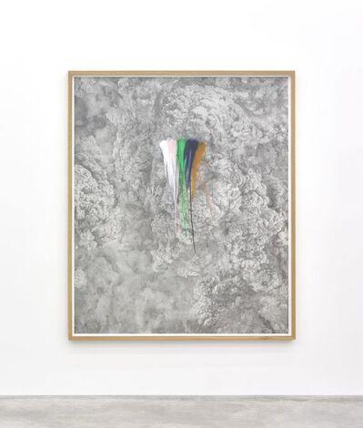 Thu Van Tran, 'Rainbow Herbicides #2', 2019