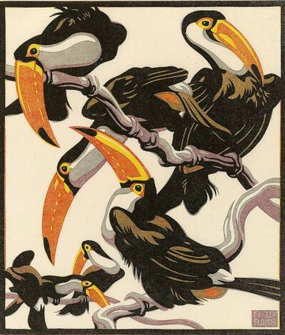 Norbertine Bresslern-Roth, 'Guianan toucanet ', 1928
