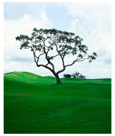 Caio Reisewitz, 'Goiânia Golf Club II', 2004