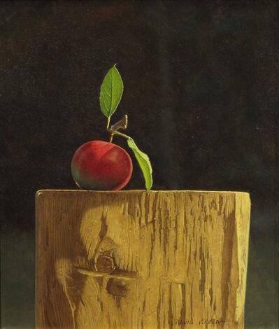 David Brega, 'Fall Light', 1990