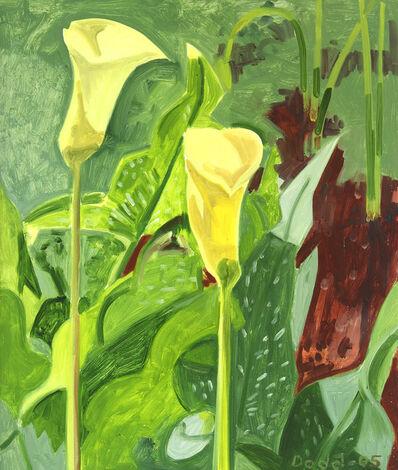 Lois Dodd, 'Calla Lilies', 2005