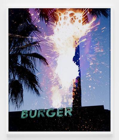 Doug Aitken, 'desire (chemical spills)', 2009