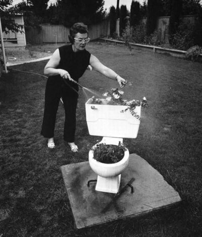 Bill Owens, 'Before the dissolution of our marriage my husband and I owned a bar. One day a toilet broke and we brought it home', 1971