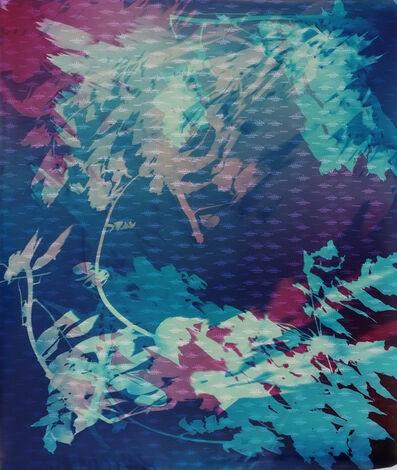 Bryan Graf, 'Field Recording (Swamp Submersion IV),', 2016