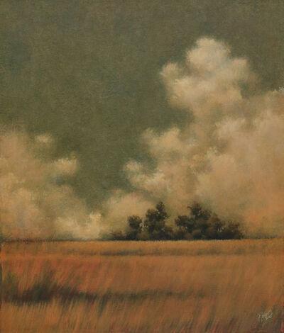 Larry Lewis, 'Outcrop'