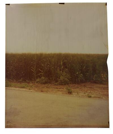 John Chiara, 'Old River Road at Carter', 2014