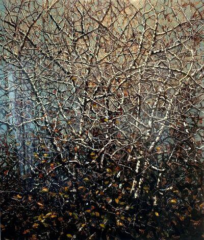 """Eric Zener, '""""Metamorphosis""""', 2012"""