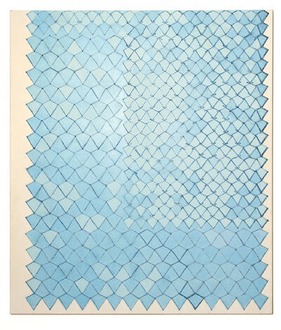 Adia Wahid, 'Netting Disrupted', 2016