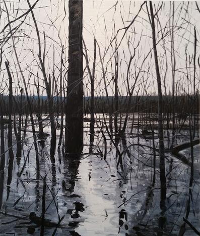 Michael Brophy, 'Overflow Lake II', 2017