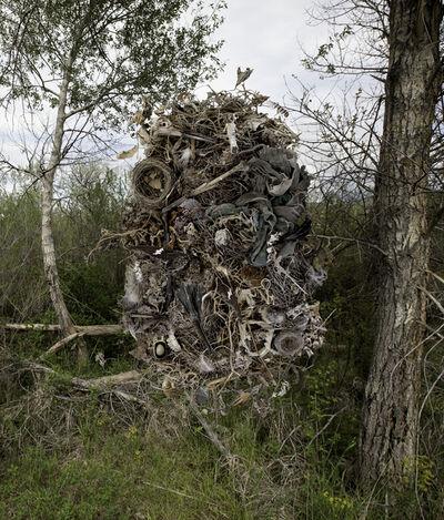 Jean Albus, 'Vestige', 2017