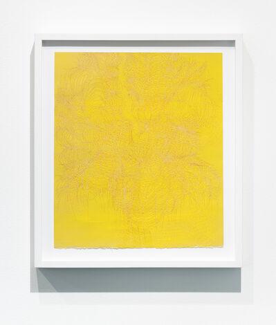 Laura Vandenburgh, 'Tangle #13', 2016
