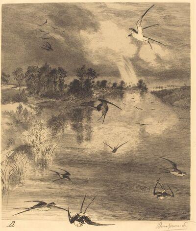 Félix Bracquemond, 'Les Hirondelles (The Swallows)', ca. 1884