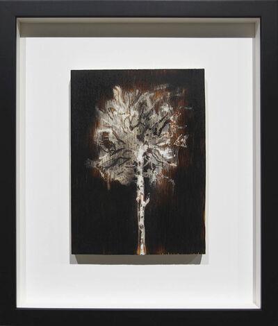 Peter von Tiesenhausen, 'Untitled, Charred wood, whitewash', 2015