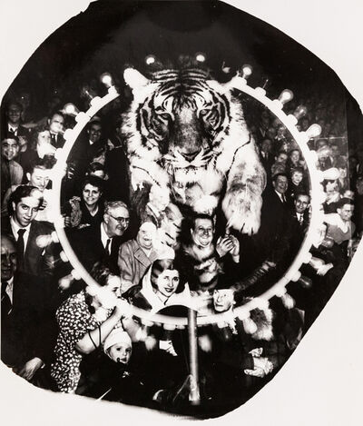 Weegee, 'Tiger Jump', ca. 1955