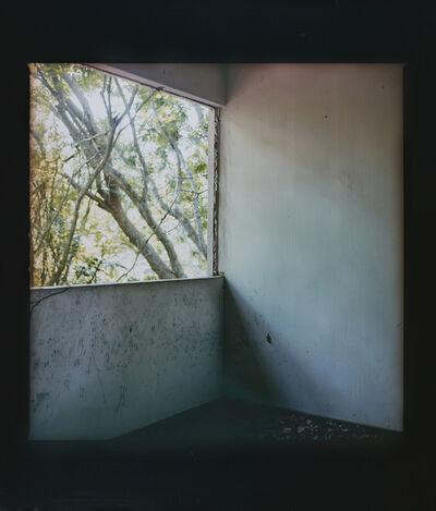 Simryn Gill, 'Windows', 2011-2017