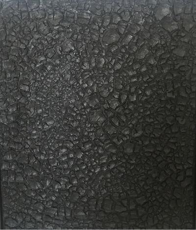 Beatriz Zamora, 'El negro 3212', 2015
