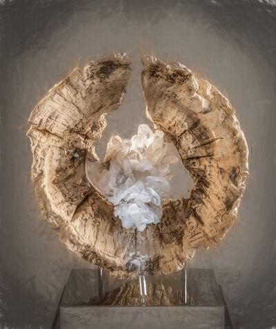 Dorit Schwartz, 'Orgin oof Life', 2018