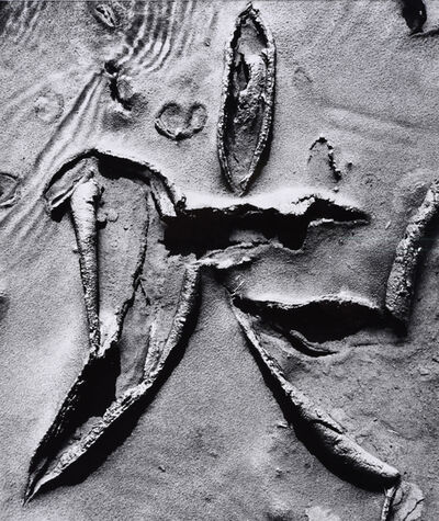 Lucien Clergue, 'Solmer, 1965 Ex. Nr. 1', 1965