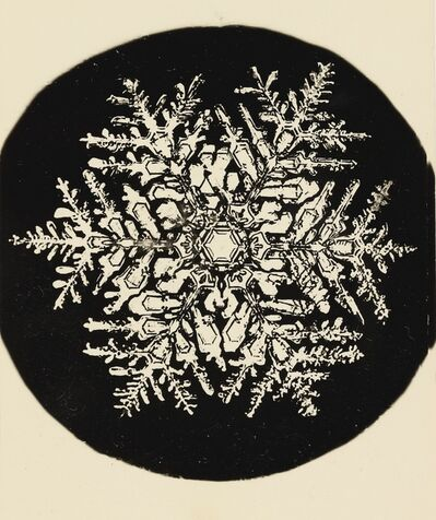 Wilson A. Bentley, 'Selected Images of Snowflakes'