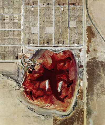 Mishka Henner, 'Coronado Feeders, Dalhart, Texas', 2013