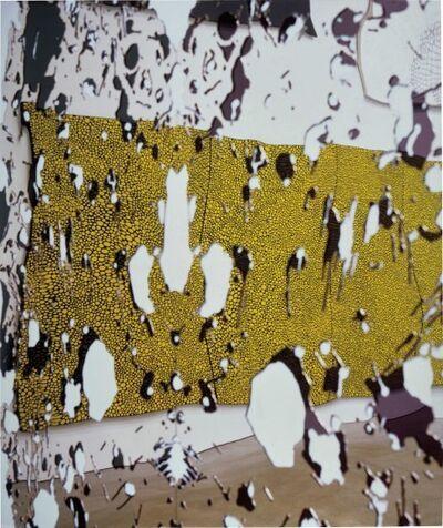 Louise Lawler, 'Not Lizard', 2002