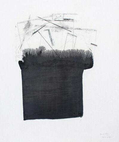 Manu vb Tintoré, 'Test amb paissatge 1', 2010