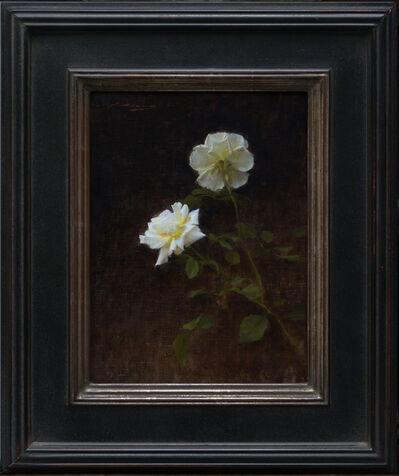 Alex Venezia, 'Roses', 2019
